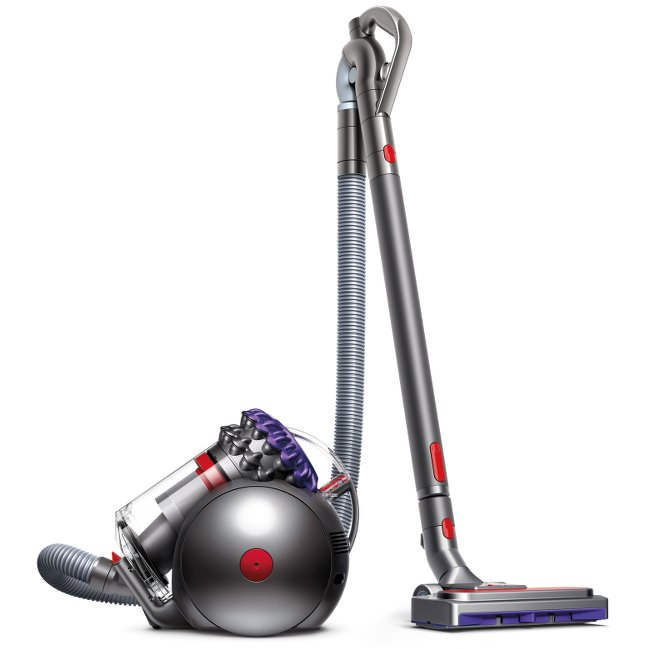 Dyson Big Ball Animal 2 Cylinder Cleaner